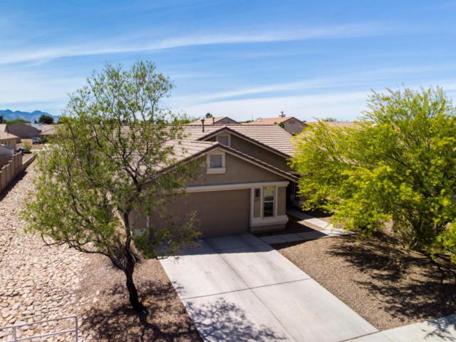 610 Temple Drive, Sierra Vista, AZ 85635 (#166946) :: The Josh Berkley Team