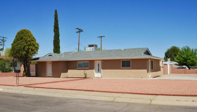 733 Calle Del Norte, Sierra Vista, AZ 85635 (MLS #166948) :: Service First Realty