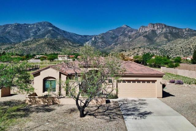 7570 S Silverstone Avenue, Hereford, AZ 85615 (MLS #167063) :: Service First Realty