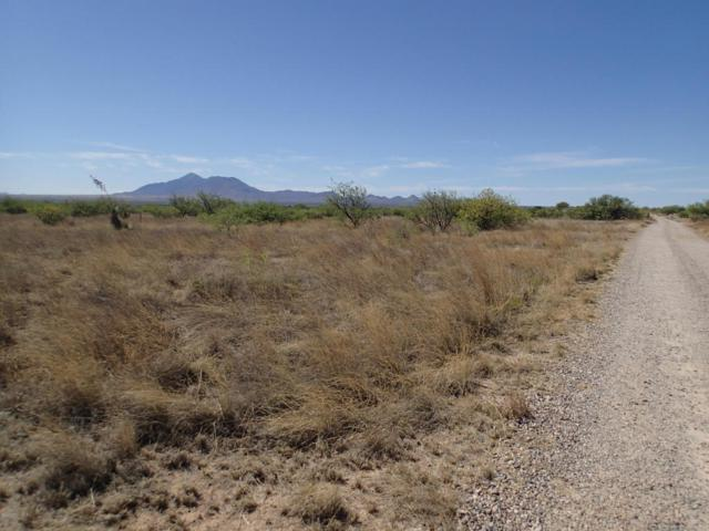 Tbd Bloomfield 4.68 Acres, Hereford, AZ 85615 (#167114) :: The Josh Berkley Team