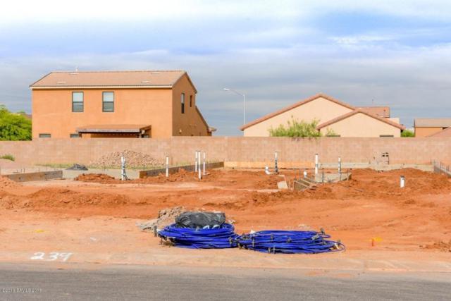 1261 Barnes Drive Lot 239, Sierra Vista, AZ 85635 (MLS #167119) :: Service First Realty