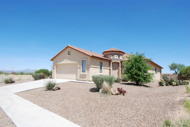 1690 S Moonshadow Drive, Benson, AZ 85602 (MLS #167182) :: Service First Realty