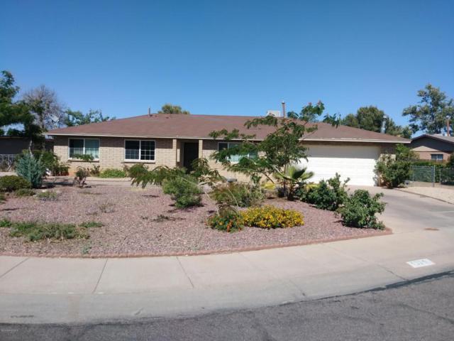 1325 Calle Amable, Sierra Vista, AZ 85635 (MLS #167184) :: Service First Realty