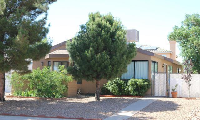 5253 Desert Shadows Drive, Sierra Vista, AZ 85635 (MLS #167199) :: Service First Realty