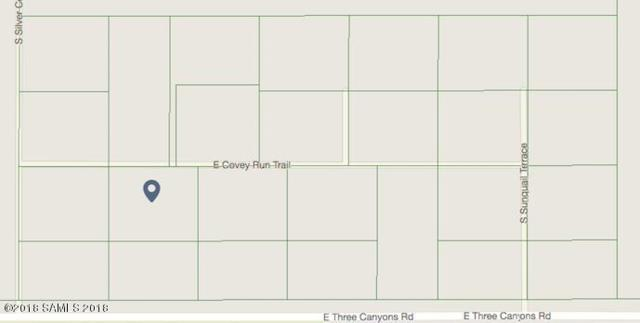 Tbd Covey Run Trail- Lot 15, Hereford, AZ 85615 (MLS #167230) :: Service First Realty