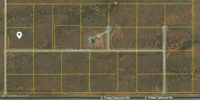Tbd Silver Concho Way- Lot 2, Hereford, AZ 85615 (MLS #167250) :: Service First Realty