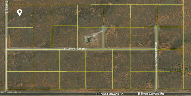 Tbd Silver Concho Way- Lot 1, Hereford, AZ 85615 (MLS #167251) :: Service First Realty