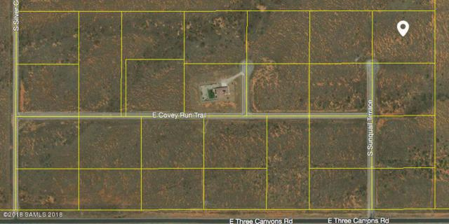 Tbd Sunquail Terrace- Lot 7, Hereford, AZ 85615 (MLS #167252) :: Service First Realty