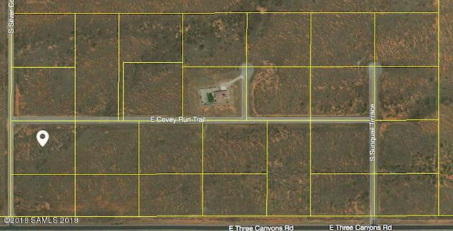 Tbd Silver Concho Way- Lot 14, Hereford, AZ 85615 (MLS #167253) :: Service First Realty