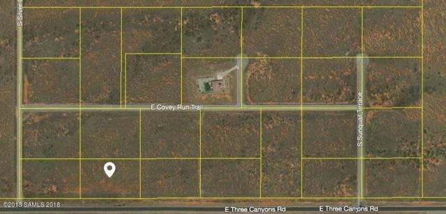 Tbd Three Canyons Rd- Lot 25, Hereford, AZ 85615 (MLS #167255) :: Service First Realty
