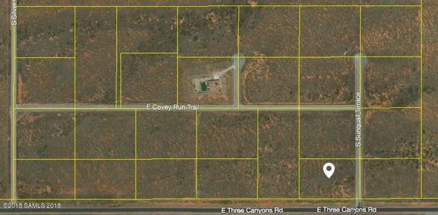 Tbd Three Canyons Rd- Lot 22, Hereford, AZ 85615 (MLS #167256) :: Service First Realty