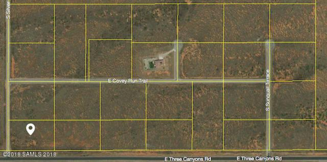 Tbd Three Canyons Rd- Lot 26, Hereford, AZ 85615 (MLS #167257) :: Service First Realty