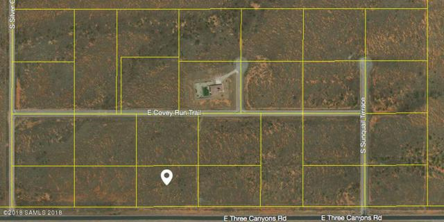 Tbd Three Canyons Rd- Lot 24, Hereford, AZ 85615 (MLS #167258) :: Service First Realty