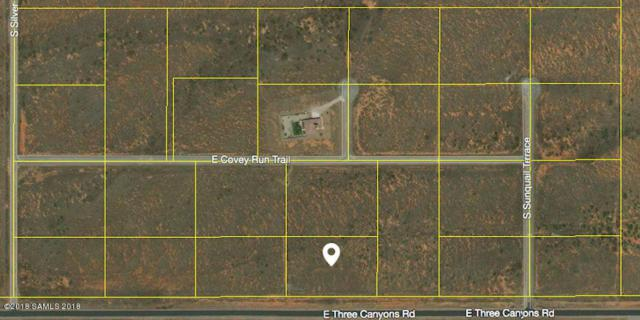 Tbd Three Canyons- Lot 23, Hereford, AZ 85615 (MLS #167259) :: Service First Realty