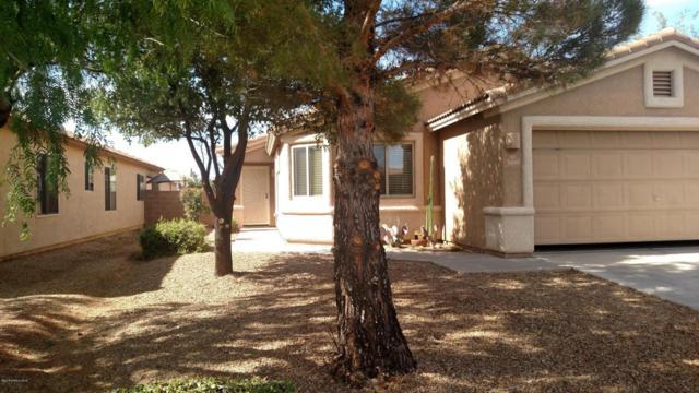 3081 Copper Pointe Drive, Sierra Vista, AZ 85635 (MLS #167278) :: Service First Realty