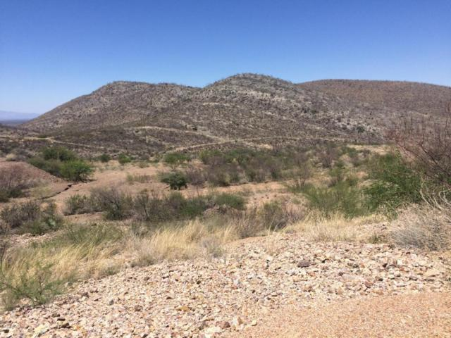 8 E Emerald Canyon Road, Tombstone, AZ 85638 (MLS #167285) :: Service First Realty
