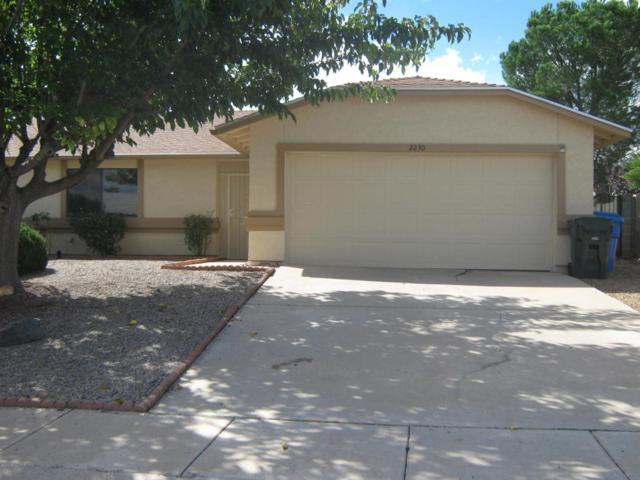 2230 Orchid Drive, Sierra Vista, AZ 85635 (MLS #167407) :: Service First Realty