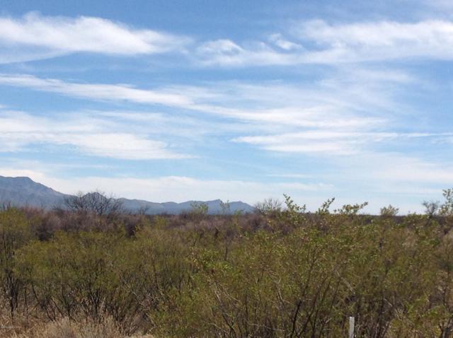 0 E Sierra Bonita Lane, Sierra Vista, AZ 85635 (MLS #167446) :: Service First Realty