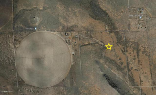 Tbd Diamond Bar, Elfrida, AZ 85610 (MLS #167478) :: Service First Realty