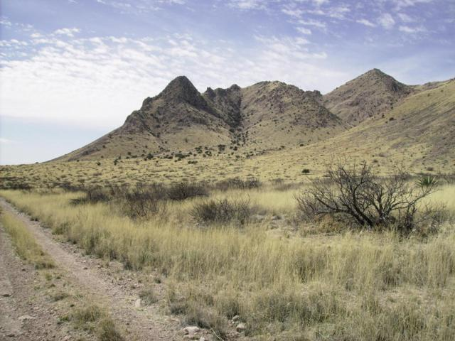 66-016a Owl's Butte, Portal, AZ 85632 (#167490) :: Long Realty Company