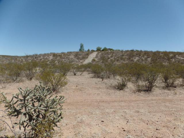 Tbd E Lot 644 And 645 Rosa Drive, Tombstone, AZ 85638 (MLS #167541) :: Service First Realty
