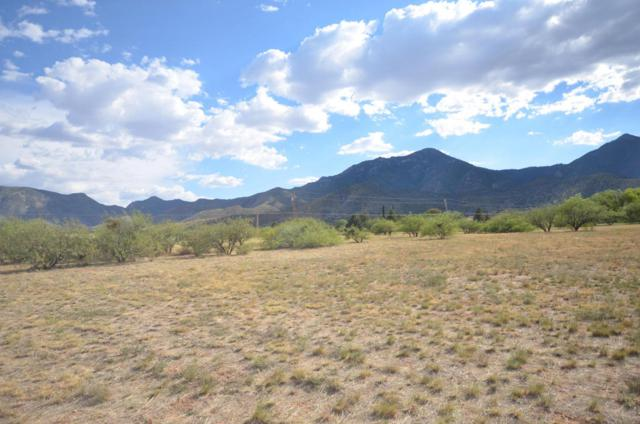 Tbd E Valley Vista Drive, Hereford, AZ 85615 (MLS #167743) :: Service First Realty