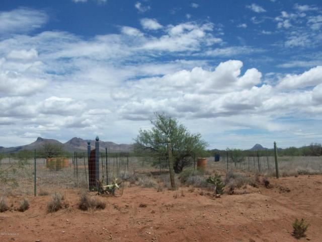 0 N Vista Del Cerro Drive, Douglas, AZ 85607 (MLS #167781) :: Service First Realty