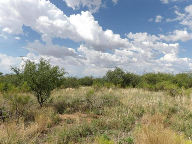 Tbd E Loma Lane #14, Sierra Vista, AZ 85650 (MLS #167851) :: Service First Realty