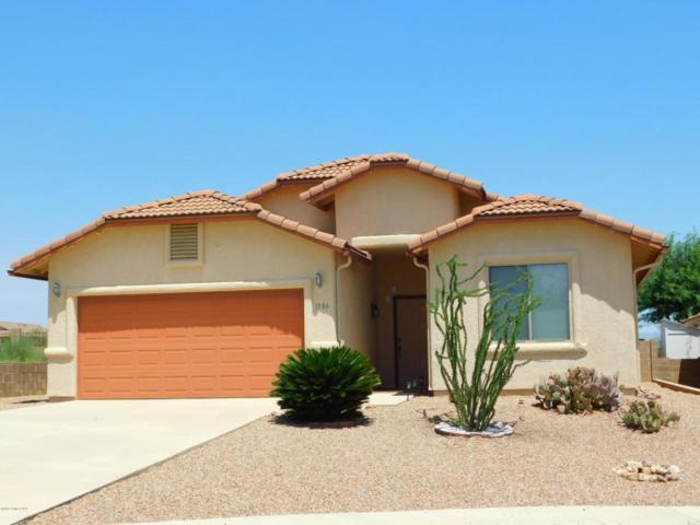 1586 W Cottonwood Canyon Drive, Benson, AZ 85602 (MLS #167854) :: Service First Realty