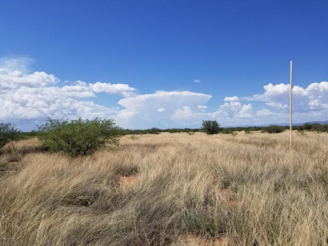 Tbd Huachuca Vista Trail Trail, Hereford, AZ 85615 (MLS #167876) :: Service First Realty