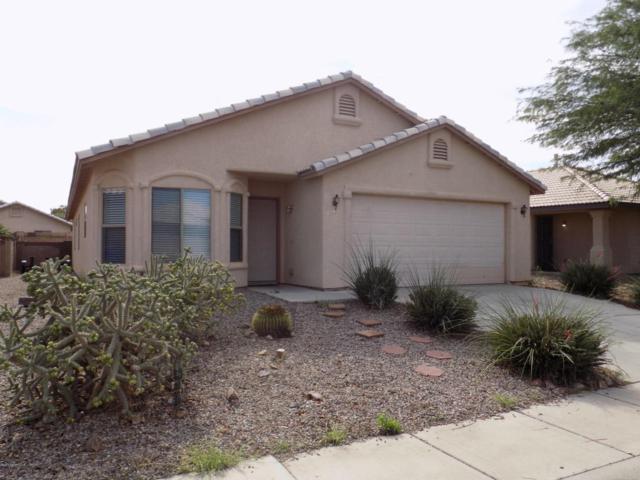 1133 San Simeon Drive, Sierra Vista, AZ 85635 (#168022) :: Long Realty Company