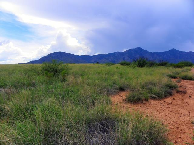 Lot 71a Rio Lobo, Hereford, AZ 85615 (MLS #168051) :: Service First Realty