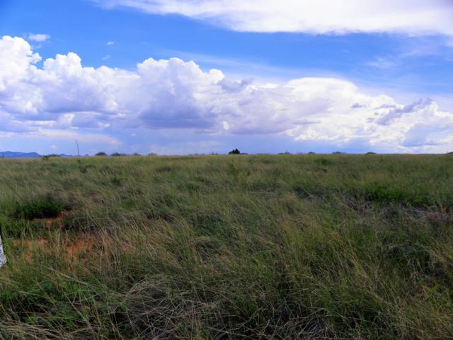 Lot 71b Rio Lobo, Hereford, AZ 85615 (MLS #168052) :: Service First Realty