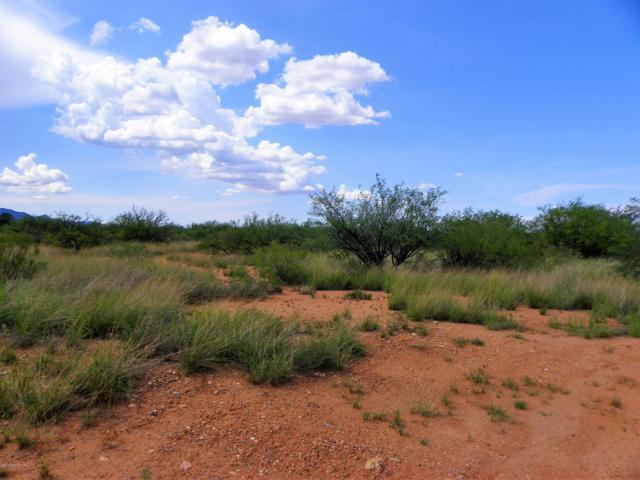 Lot 71c Rio Bravo, Hereford, AZ 85615 (MLS #168053) :: Service First Realty