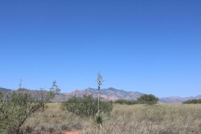 Tbd No Address 20.02 Ac, Cochise, AZ 85606 (MLS #168114) :: Service First Realty