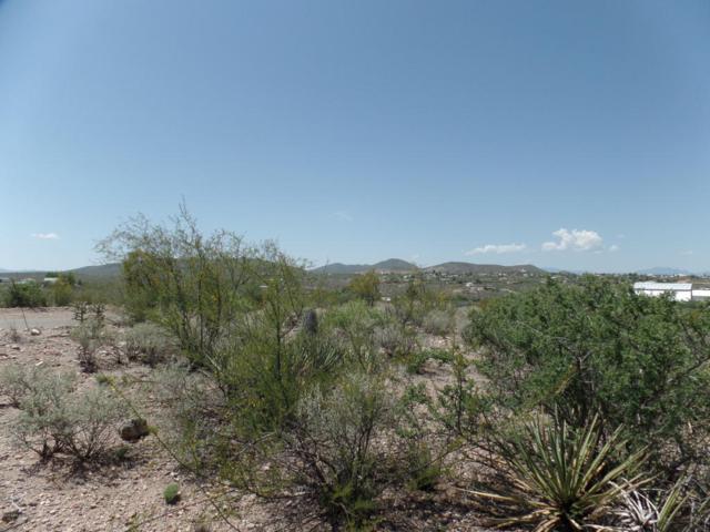 Tbd Camino San Rafael Road, Tombstone, AZ 85638 (MLS #168128) :: Service First Realty