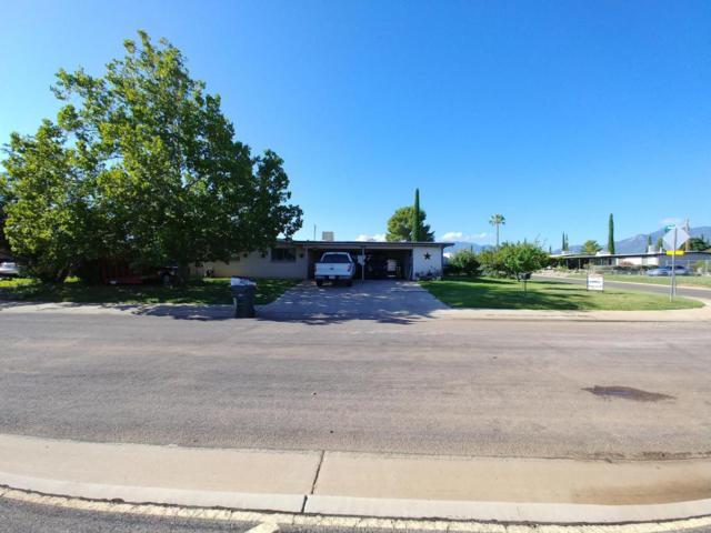 464 E Nelson Drive, Sierra Vista, AZ 85635 (#168135) :: Long Realty Company