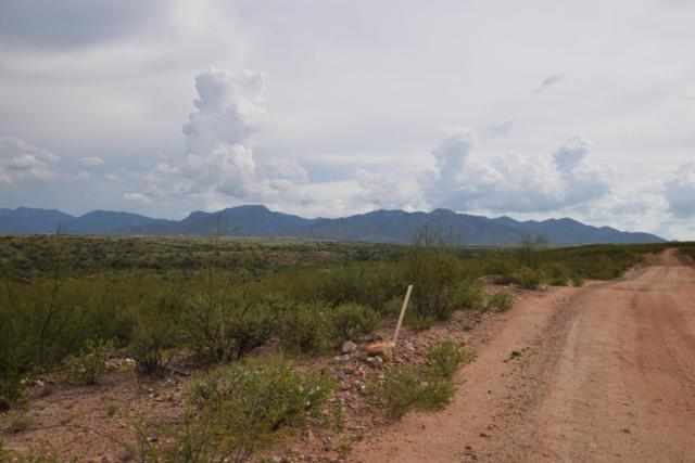 Xxx Lonely Dove Place, Huachuca City, AZ 85616 (MLS #168154) :: Service First Realty