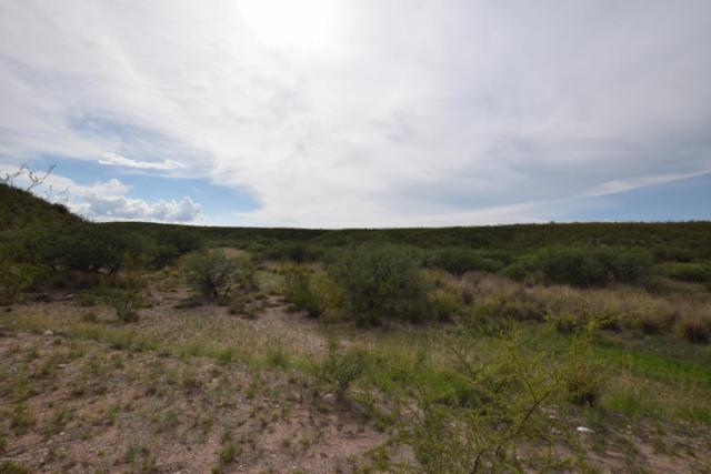 Xxx Quail Hollow Dr, Huachuca City, AZ 85616 (MLS #168156) :: Service First Realty