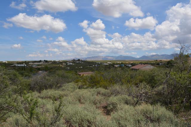 Tbd N Ed West Lane, Tombstone, AZ 85638 (#168211) :: Long Realty Company