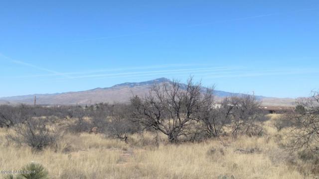 0 Thunder Pass, Lot 10, Benson, AZ 85602 (MLS #168353) :: Service First Realty