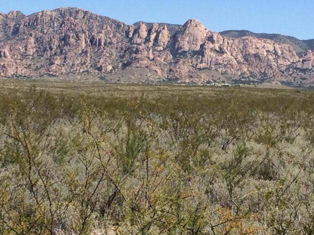 Lot 17 Tombstone Territory Ranches, Elfrida, AZ 85610 (MLS #168435) :: Service First Realty