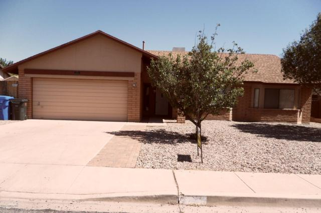 3495 Village Drive, Sierra Vista, AZ 85635 (#168458) :: The Josh Berkley Team