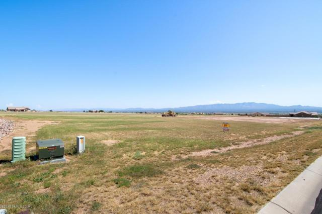 Lot 96 E Saddlehorn Circle, Hereford, AZ 85615 (MLS #168477) :: Service First Realty
