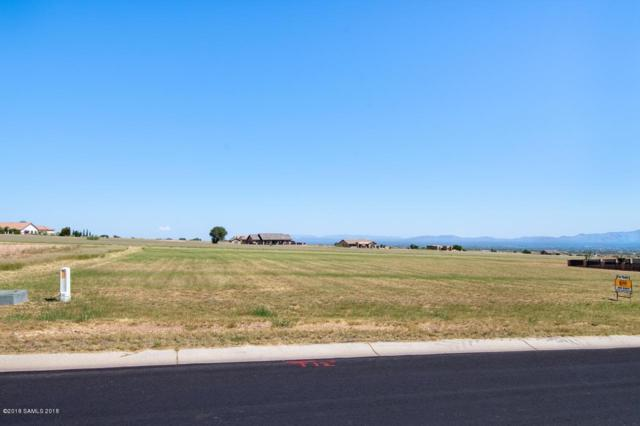 Lot 98 E Saddlehorn Circle, Hereford, AZ 85615 (MLS #168478) :: Service First Realty