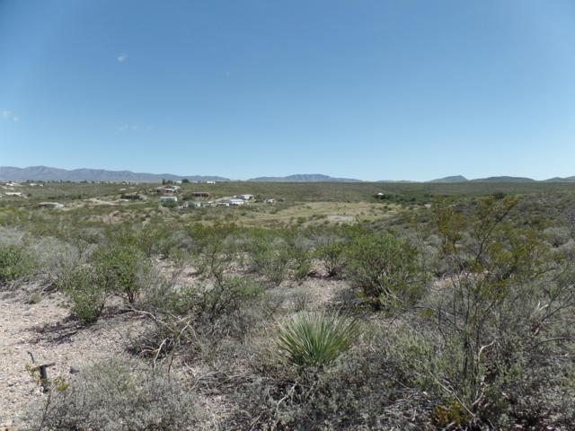 Lot 40 N Papago Place, Tombstone, AZ 85638 (#168505) :: Long Realty Company