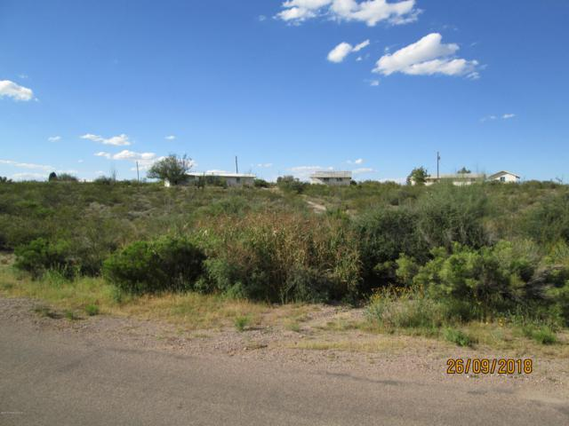 Lot 168 Rialto Place, Tombstone, AZ 85638 (#168538) :: Long Realty Company