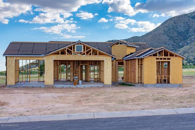 6370 E Saddlehorn Circle Lot 59, Hereford, AZ 85615 (MLS #168587) :: Service First Realty