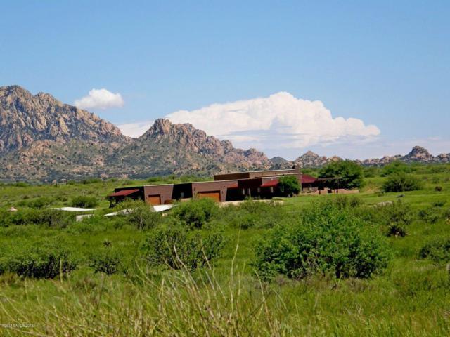 6851 E Horse Ranch Road, Saint David, AZ 85630 (#168668) :: Long Realty Company