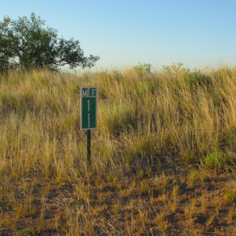 Lot # 6 W Gleeson Road, Elfrida, AZ 85610 (MLS #168703) :: Service First Realty